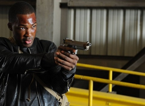 24-legacy-ft